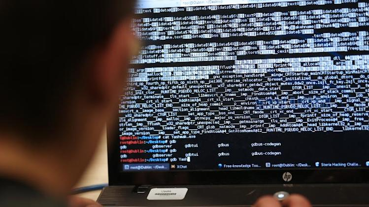 Even as Europe powered up its most ambitious ever cybersecurity exercise this month, doubts were being raised over whether the continent's patchwork of online police was right for the job