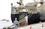 "File photo shows the Nisshin Maru docked at the Tokyo port. Commercial whaling is banned under an international treaty but Japan has since 1987 used a loophole to carry out ""lethal research"" on the creatures in the name of science"