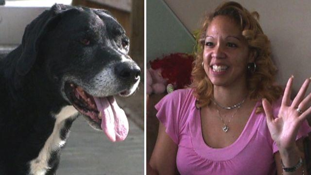 'Dead' dog reunited with owner after 10 years