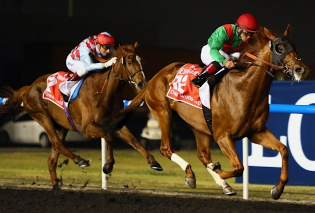 track in Dubai on March 30, 2013. The 2011 Kentucky Derby winner (1