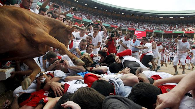 A wild cow leaps over revellers into the bull ring after the second running of the bulls of the San Fermin festival in Pamplona