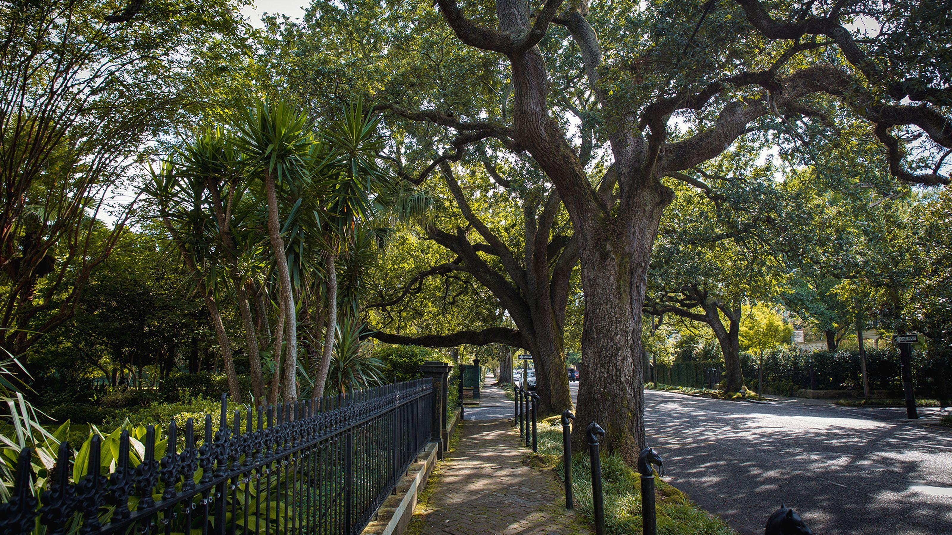 SPONSORED POST, : Beauty Beyond Bourbon Street: A NOLA Garden District Walking Tour