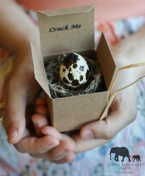 Quail Egg Custom Gender Announcements