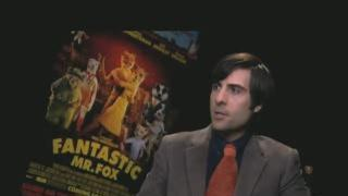 Artistdirect.Com Exclusive Jason Schwartzman The Fantastic Mr. Fox Interview