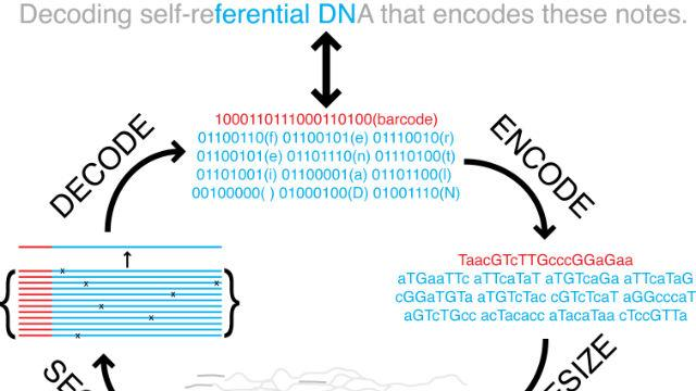 Scientists Convert a 53,000-Word Book Into DNA