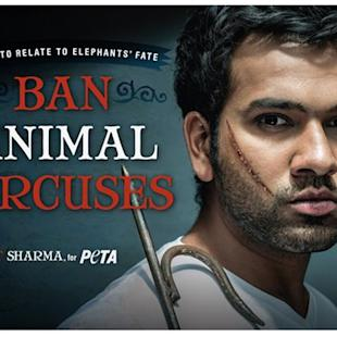 Rohit bats for elephants