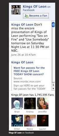 Grow Your Tour or Activity Business Fan Base With Facebook Contests image fanboxleon