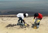 Workers clean up oil that washed ashore after the Deepwater Horizon spill in the Gulf of Mexico in 2010 in Waveland, Mississippi