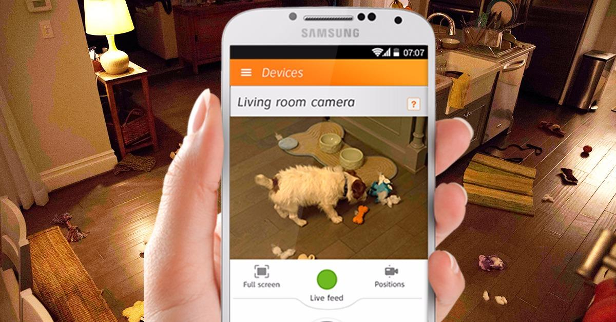 See what's going on at home even when you're away