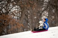 Frank Arnold, of Lafayette, goes down a hill while sledding with his dog Lincoln at Murdock Park, in Lafayette, Ind., on Thursday, Dec. 27, 2012. (AP Photo/The Journal & Courier, Brent Drinkut)