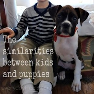 Kids and pets: They're really not so different!