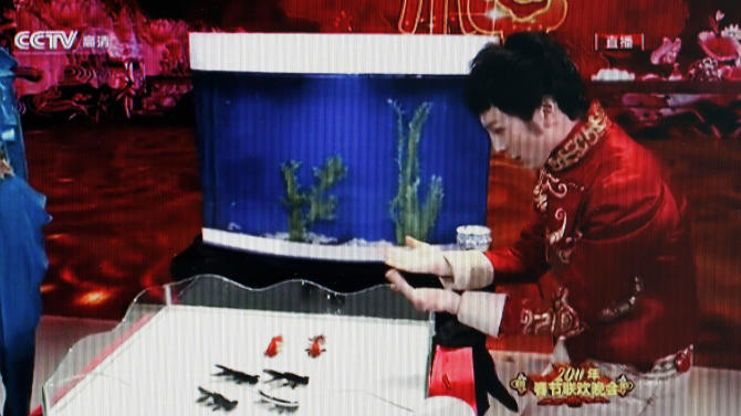 In this image taken from a video footage run by China's CCTV via APTN, magician Fu Yandong directs goldfishes swim in sync during a Lunar New Year's Eve television show in Beijing on Feb. 2, 2011. Animal activists in China said the now-famous magic trick is abusive and are asking the state broadcaster not to show the trick again Thursday, Feb. 17, 2011. (AP Photo/CCTV via APTN) ** CHINA OUT, NO SALES, NO ARCHIVES, EDITORIAL USE ONLY **
