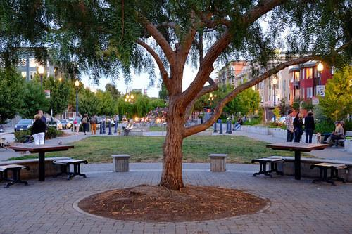 Year in Curbed: What Was Your Favorite Neighborhood in 2014 and Why?
