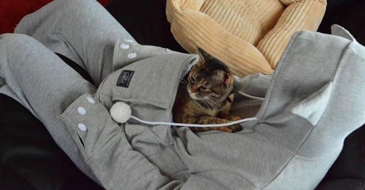 This Hoodie Has A Pouch Built In For Your Cat