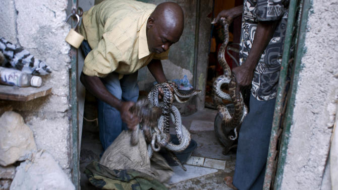 In this Jan. 27, 2013 photo, an assistant to snake handler Saintilus Resilus prepares to wash snakes before using them in pre-Lenten Carnival performances in Petionville, Haiti. Resilus is one of millions of people scrambling to get by in a country where the unemployment rate hovers around 60 percent and most get by on $2 a day. Resilus has used snakes and other animals to earn a little money since at least 1974. (AP Photo/Dieu Nalio Chery)