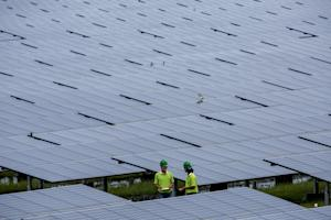 Employees of a Solar farm company take notes between …
