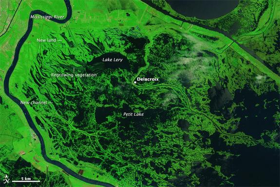 Hurricane Katrina's Stark Changes Endure in Images from Space
