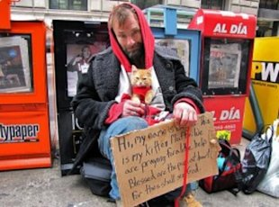 America's unexpected pet owners: Homeless adults and young Runaways