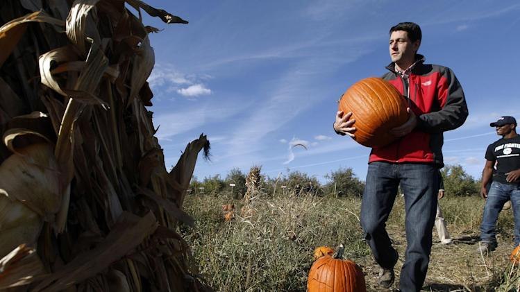 Republican vice presidential candidate, Rep. Paul Ryan, R-Wis., picks a pumpkin at the Apple Holler farm pumpkin patch, Sunday, Oct. 7, 2012 in Sturtevant, Wis.  (AP Photo/Mary Altaffer)