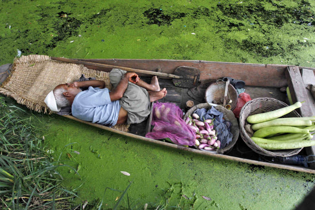 A Kashmiri vegetable vendor takes a nap in his boat at Dal Lake in Srinagar
