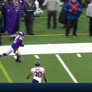 Minnesota Vikings wide receiver Greg Jennings one-handed grab