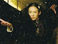 Zhang Ziyi to retire from martial arts