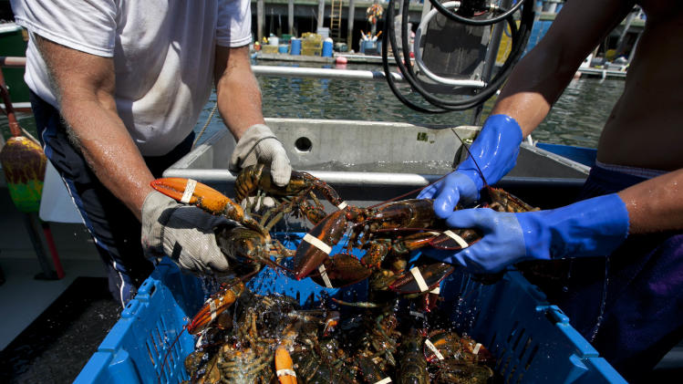 Canadian fishermen boiling mad over Maine lobsters