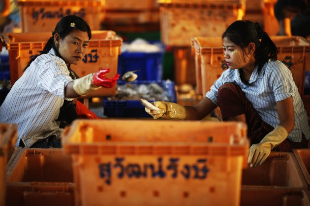 Workers from Myanmar sort fish at a port in the southern province of Pattani