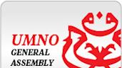 Malay-centric economics dominate Umno Youth debate