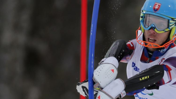 Slovakia's France skis during the Men's Visually Standing Slalom event at the 2014 Sochi Paralympic Winter Games at the Rosa Khutor Alpine Center