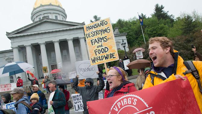 People chant and carry signs during a protest against Monsanto in front of the capitol building in Montpelier, Vt. on Saturday, May 25, 2013. Marches and rallies against seed giant Monsanto were held across the U.S. and in dozens of other countries Saturday. Protesters say they want to call attention to the dangers posed by genetically modified food and the food giants that produce it. Monsanto Co., based in St. Louis, said Saturday its seeds improve agriculture by helping farmers produce more from their land while conserving resources such as water and energy. (AP Photo/Mark Collier)