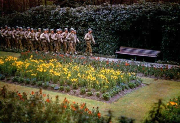 """Bunga-bunga bermekaran…"