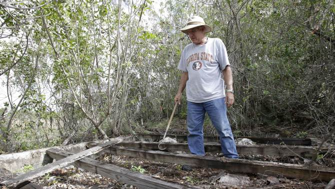 """In this Jan. 16, 2013 photo, Jim Howard of Cooper City, Fla., searches the foundation of an old building in the Florida Everglades in search of pythons as part of the month long """"Python Challenge."""" Wildlife officials say more than 1,000 people signed up for the competition that began Saturday and ends Feb. 10. The state hopes the hunters will help researchers collect more information about the pythons. The large snakes are an invasive species and are considered a menace to Florida's swamplands. (AP Photo/Wilfredo Lee)"""