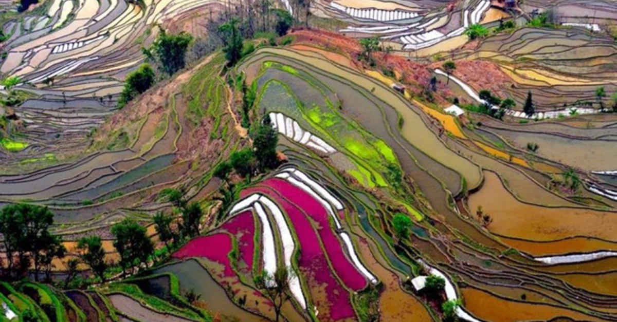 15 Incredibly Colorful Natural Landscapes on Earth