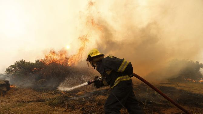 Firefighters battle to control a bushfire in Cape Town's Tokai forest