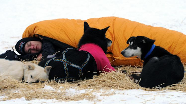 Christine Roalofs rests with her dogs at the Finger Lake checkpoint in Alaska during the Iditarod Trail Sled Dog Race on Monday, March 4, 2013. (AP Photo/The Anchorage Daily News, Bill Roth)