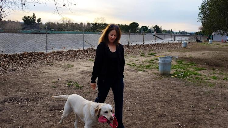"""In this Feb. 1, 2013 photo, pet owner, Linda Markley, walks with her Labrador retriever, Riley,  at the Sepulveda Basin Off-Leash Dog Park in Encino, Calif. Markley loves Riley for dozens of reasons, but specifically cited the dog's intelligence. Besides single words like """"keys,"""" """"shoes,"""" """"park,"""" and """"shake,"""" Riley understands phrases like """"go to Ryan's room,"""" """"go to Jack's house,"""" and """"let's go for a hike,"""" she said. (AP Photo/Richard Vogel)"""