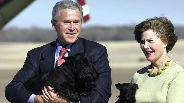 George W. Bush Whiles Away the Time Painting Pictures of Dogs