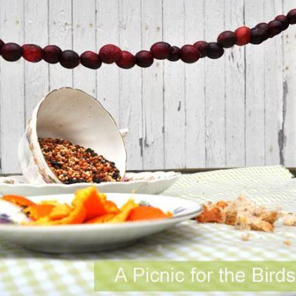 A Picnic for the Birds