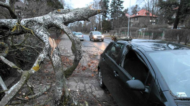 A car hit by a fallen tree stops at the side of a road after strong winds caused by hurricane-force Xaver slammed into Szczecin