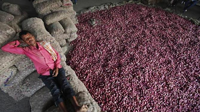 A labourer rests on sacks filled with onions at a wholesale vegetable market in Chandigarh October 24, 2013. REUTERS/Ajay Verma