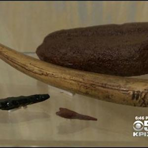 Looters Take Historic Artifacts From Northern California Lake