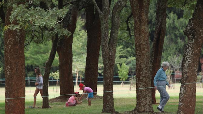 "in this photo taken Monday, June 3, 2013, a family plays underneath the indigenous msasa trees at the Royal Harare Golf Club. Club manager Ian Mathieson says a program to cut down ""alien'' trees and replace them with trees ""indigenous"" to Zimbabwe is well under way. (AP Photo/Tsvangirayi Mukwazhi)"