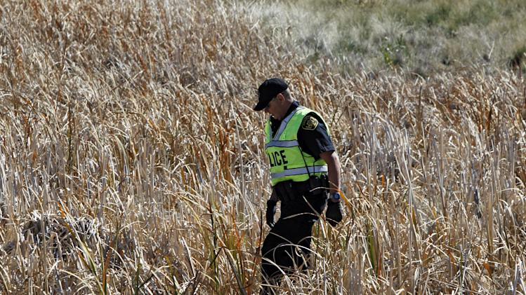 A police officer walks through a field of tall grass searching for ten-year-old Jessica Ridgeway near her home in Westminster, Colo., on Monday, Oct. 8, 2012. The youngster has been missing since she left her home Friday morning on her way to school. (AP Photo/Ed Andrieski)