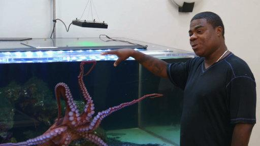 Tracy Morgan's Octopus Needs a Tank
