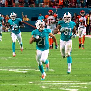 Why Not Us?: Miami Dolphins