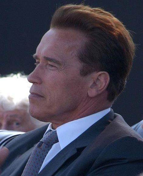 Professor Schwarzenegger? Other Celebrities to Teach College