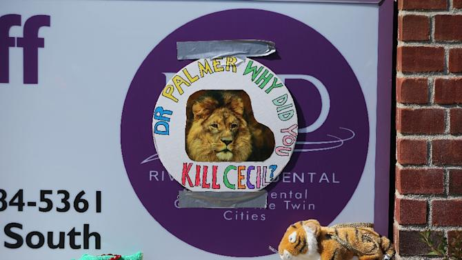 Protesters placed stuffed animals outside Walter Palmer's River Bluff Dental Clinic in Minnesota, after it was revealed the US dentist had paid $50,000 to kill a lion on a hunting trip to Zimbabwe