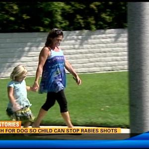 Search for dog so child can stop rabies shots