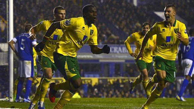 Norwich City's Sebastien Bassong (3rd L) celebrates scoring against Everton during their English Premier League match in Liverpool (Reuters)